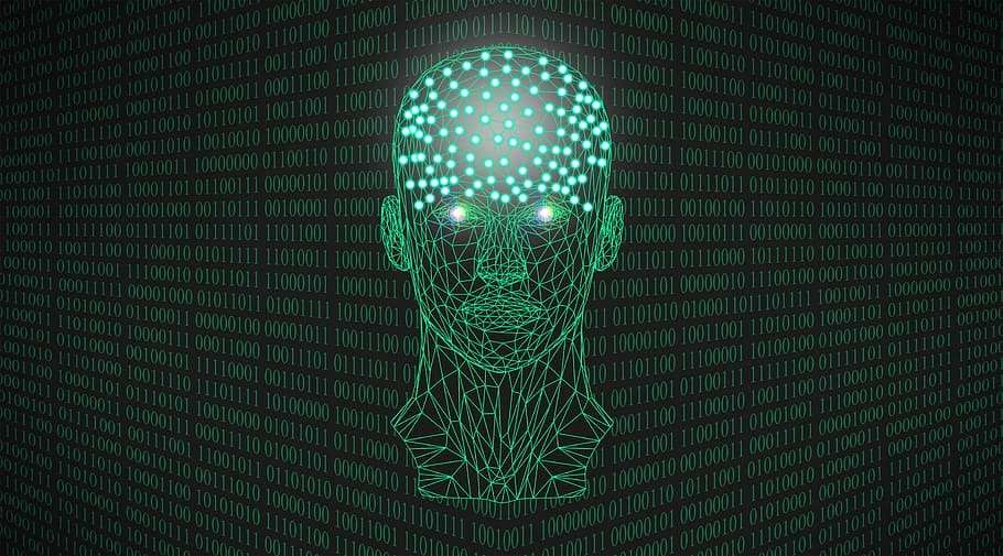 Your Guide to Machine Learning Malware